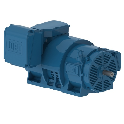 Cast Iron ODP Motors